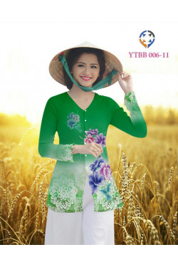 YTBB 006 -11