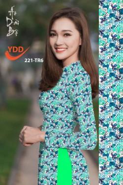 YDD 221-TR6